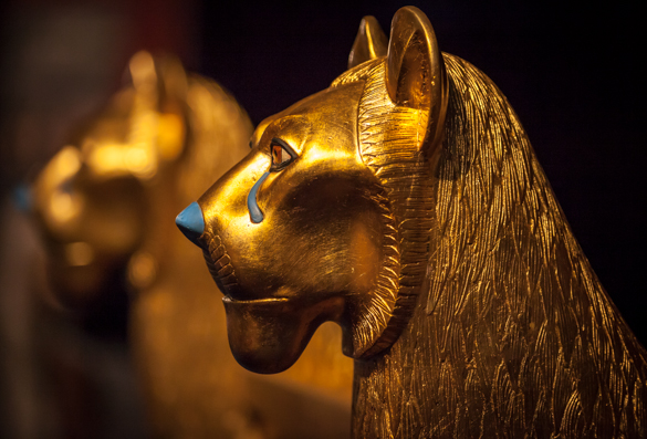 The Egyptian Museum, Cairo Day Tour