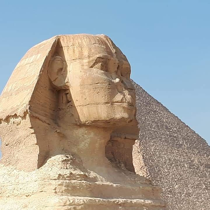 7days tour Egypt