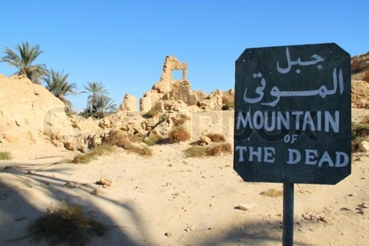 Cairo, Alexandria and Siwa Oasis Tour