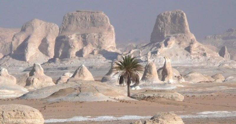 Bahareya Oasis (White Desert); 2 Nights, 3 Days