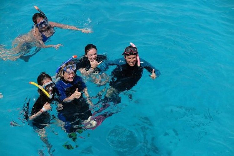 Snorkeling Trip At Port Ghalib Marina from Marsa Alam