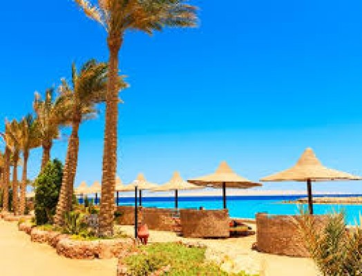 Cairo, Alexandria and Hurghada Tours Packages